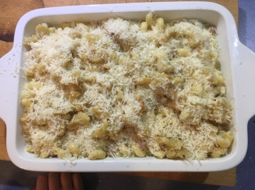 Mac Cheese + Parmesean